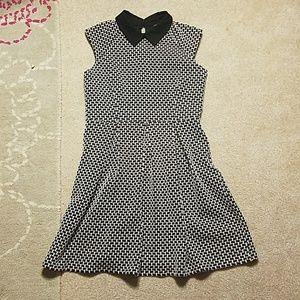 Ann Taylor Jacquard peter pan collar Dress